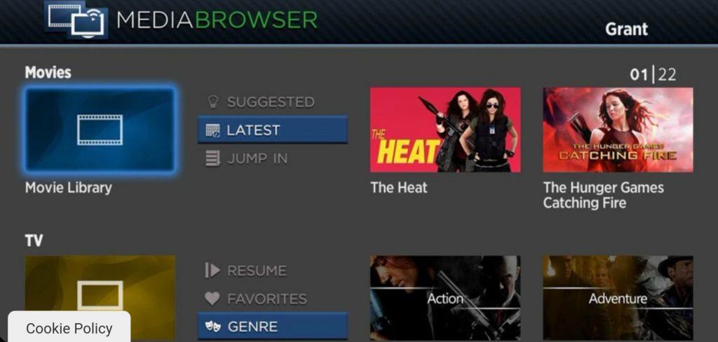 Roku Web Browser